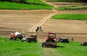Oare vom avea vreodata agricultura performanta